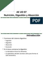 ae ud 07. digestion