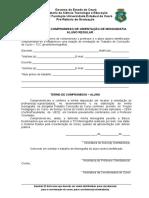 TERMO DE COMPROMISSO DE ORIENTAÇÃO DE MONOGRAFIA ALUNO REGULAR