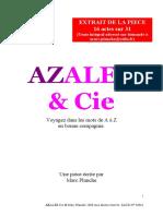 azalee texte