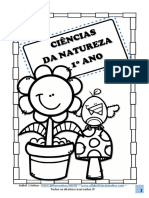 atividades-ciências-para-o-1-ano