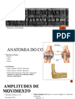 Articulação do cotovelo (cúbito e antebraço)