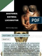 anatomia SIST LOCOMOTOR apresentação