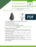 CIENCIAS_NATURALES_QUINTO_GRADO_CLASE_14