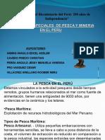 REMGIMENES ESPECIAL MINERIA Y PESCA EN PERU