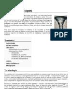 Tourbillon_(physique)