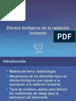 4. Efectos Biologicos de La Radiacion Ionizante