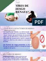 DIAPO 03 FACTORES DE RIESGO PRENATALES