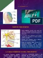1.3 Nervio Trigémino y Su Relación Con Las Técnicas de Anestesia Local22 Completo