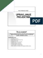 Multiprojektni menadzment