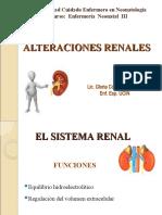 8.- ALTERACIONES RENALES