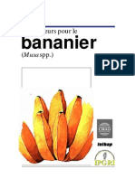 descripteurs bananier