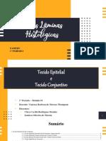 Lâminas Histológicas -