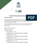 Formation-Programmation Summer Camp (1)