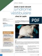 CAT Syndrome Vestibulaire Lapin