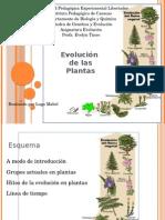 Evolución de las Plantas
