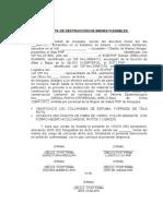 MODELO ACTA-DESTRUCCION