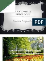 Anatomia e Fisiologia. Sistema Esquelético