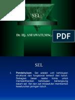 Introduction Fisiologi