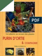 Les plantes au secours des plantes purin d ortie et compagnie