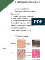Biotech 6 Muscolo Schel