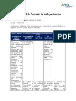 Tarea Contexto de La Organización