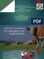 Grupo2_clasificación de subproductos bovinos