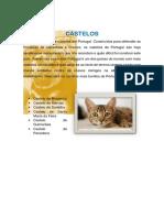 Castelo s
