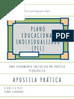 PLANO EDUCACIONAL INDIVIDUALIZADO (PEI) (1)