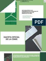 Instauración de Los Lineamientos Del Programa de Interrupción Legal Del Embarazo en CDMX.