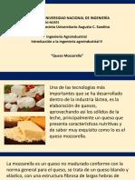 Diapositivas Queso Mozzarella