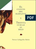 Galleguillos, Patricio - El Cuento Del Elefante y Treinta Cuecas Al Hilo
