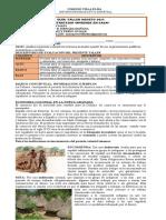 5_Sociales_Nancy Pérez Ovalle_NANCY DEL PILAR PERE
