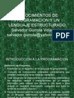 CONOCIMIENTOS DE PROGRAMACION Y UN LENGUAJE ESTRUCTURADO