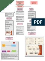 Organizador Grafico Introducción 1
