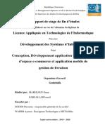 rapport_finale (1)