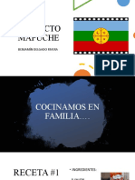Proyecto Mapuche Benja