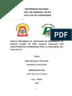 Ensayo Preliminar de Adaptación de Rendimiento de Nuevos Clones de Papa (Solanum Tuberosum) Con Características Promisorias Para La Zona Media Del Valle de Ic