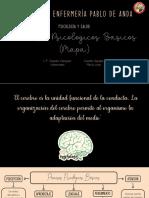 Procesos Psicologicos Basicos (Mapa)