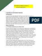 Cic - Estudo e Reflexão - Tema 05 - o Mistério Da Santíssima Trindade
