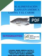 Plan de Alimentación de La Tilapia en América Latina