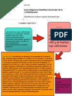 DIAGRAMA IDENTIFICAR EL PROCESOS DE LA PREPARACION DE UN BIOFERTILIZANTE