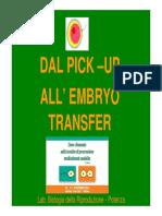 Dal Pick-Up all'Embryo Transfer