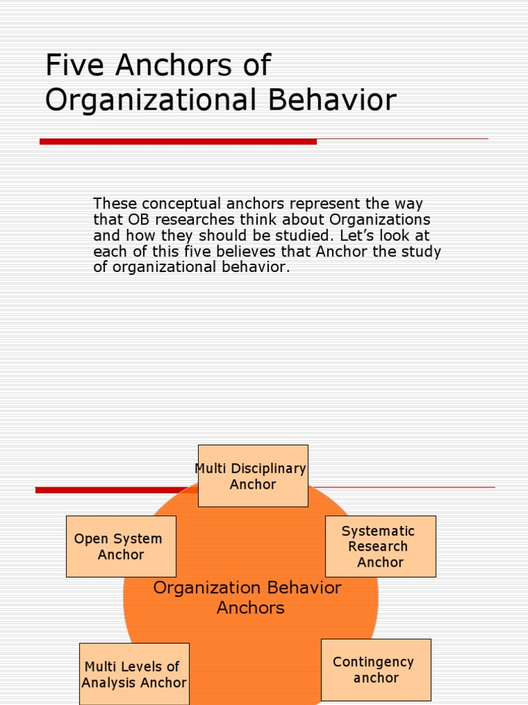 an organizational behavior analysis