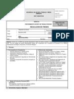 MAN-PETS-001 Regulación de Frenos