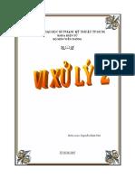 Vixuly2