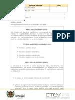 protocolo individual de la unidad 3 PYE