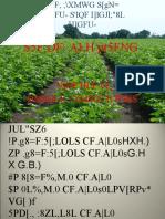 Hybrid Seed Prod-tech