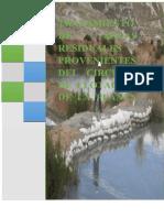 plan proyecto ambiental