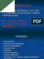 Embriologia sexualidad (1)