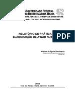 Relatório_de_Microbiologia_-_04_-_(_Agar_nutriente)